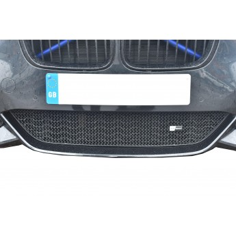 BMW M140i - Lower Grille