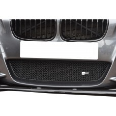 BMW M135i - Lower Grille