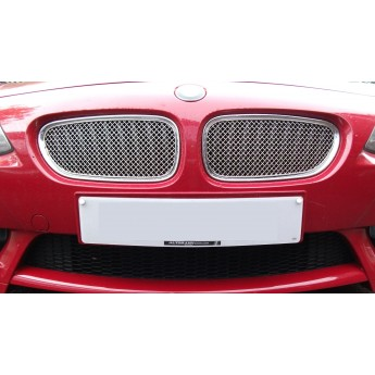 BMW Z4 Upper Grille Set