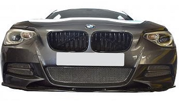 The Brand New BMW M135i Front Grille Set